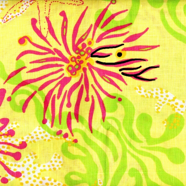 Bimini Lilly Pulitzer Lee Jofa