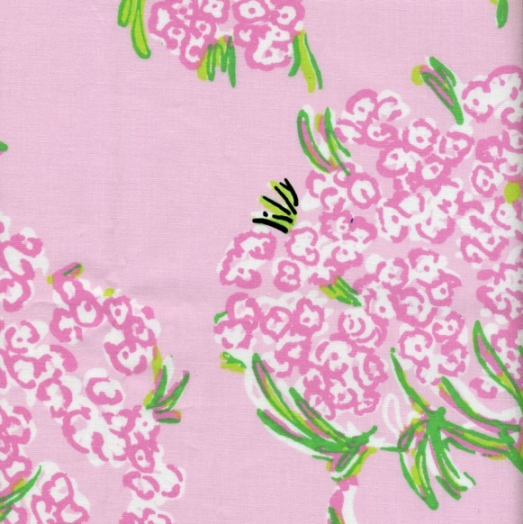 Racy Lacey Lilly Pulitzer Lee Jofa