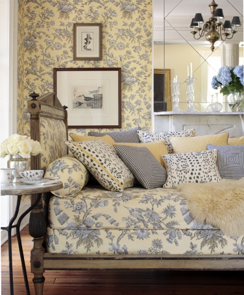 Shell-Toile